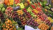 هزینه تولید محصولات کشاورزی ٤٥ درصد از پارسال بیشتر شد