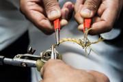 تجارت زهر،عقربهای ایرانی را منقرض می کند