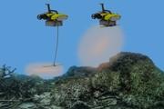 نجات صخرههای مرجانی با ربات