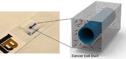 استفاده از دستگاه به جای حیوان در آزمایشهای پزشکی مربوط به سرطان لوزالمعده