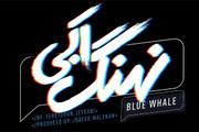 سانسور گسترده سریال «نهنگ آبی»/  ساعد سهیلی: ۶۰ دقیقه میسازیم، ۲۲ دقیقه سانسور میشود