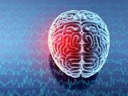 خطر ابتلا به سرطان مغز در صورت داشتن تعداد سلولهای مغزی بیشتر