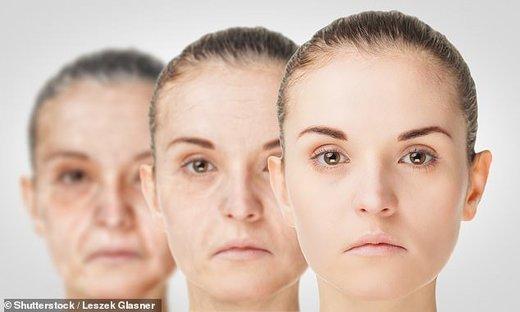 چهره انسان هر ۱۰ سال یکبار پیرتر میشود