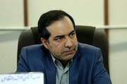 قائممقام وزیر ارشاد خبر داد: روند انتشار اطلاعات شتاب گرفته است