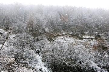 شدت بارشها در جنوب غرب بیشتر میشود؛ برف در مناطق پرارتفاع