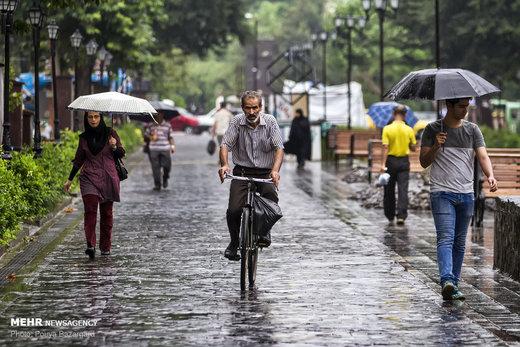 بارش باران ادامه دارد!/ کاهش ۶ درجهای دما