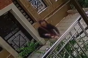 فیلم | این شیوه باورنکردنی سرقت در تهران را حتما ببینید!