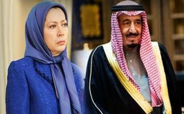 گاردین: عربستان احتمالا حامی مالی اصلی منافقین است