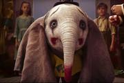 فیلمی تازه از خاصترین فیل دنیا