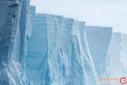 کشف علت صدای عجیب در قطب جنوب