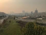۲۲ هزار ساختمان ناایمن در تهران/احتمال تکرار تراژدی پلاسکو