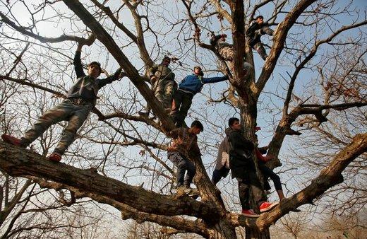 مردم از درخت بالا رفتهاند تا تشییع جنازه حافظ الله میر، رهبر جدایی طلب کشمیر را تماشا کنند. او در حمله افراد ناشناس کشته شد