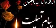 لاریجانی درگذشت والده طهرانچی را تسلیت گفت