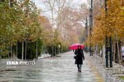 تصاویر | حال خوب پاییز در تهران