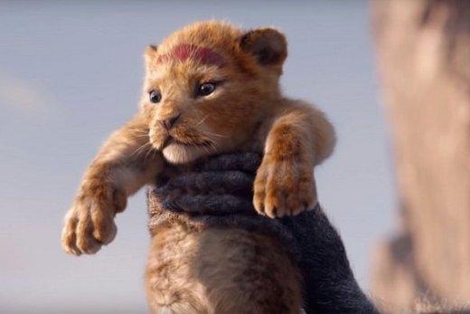 «شیر شاه» نیامده رکورد زد
