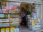 پایش ۱۸ فروشگاه سموم کشاورزی در آمل/ فروش سموم تاریخ گذشته ممنوع است