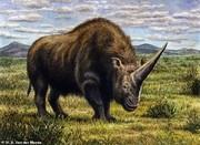تکشاخ ۳.۵ تنی سیبری تا ۳۹ هزار سال پیش هم وجود داشت/ عکس