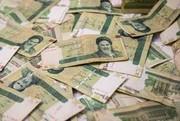 یک اقتصاددان تشریح کرد:چرایی سقوطارزش ریال در همه دولتها
