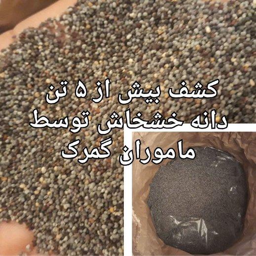 عکس | کشف ۵۰۰۰ کیلو دانه خشخاش در گمرکاینچه برون