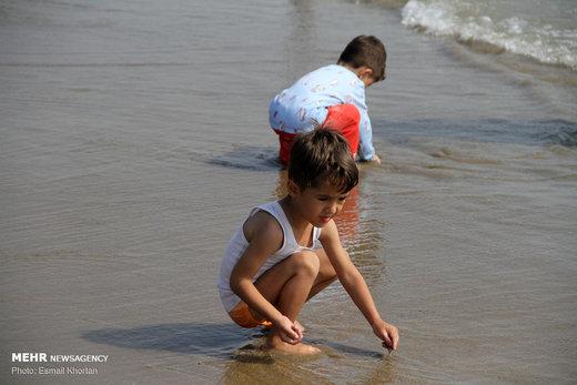 تفریح در ساحل خلیج فارس