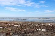 تصاویر | سواحل گیلان زیر خروارها زباله