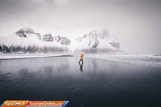 برترین تصاویر ارسال شده به مسابقه عکاسی سونی