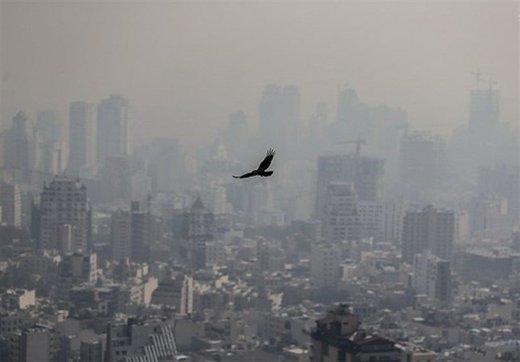 معاون رئیسجمهور: هفت روز مسمومیت با اُزون در تهران داشتیم