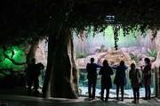 تصاویر | بزرگترین تونل آکواریوم ایران را ببینید