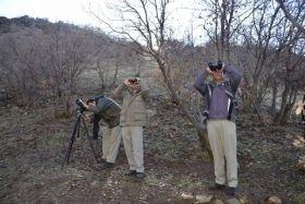 سرشماری حیات وحش مناطق حفاظت شده سفیدکوه خرمآباد و ازنا پایان یافت