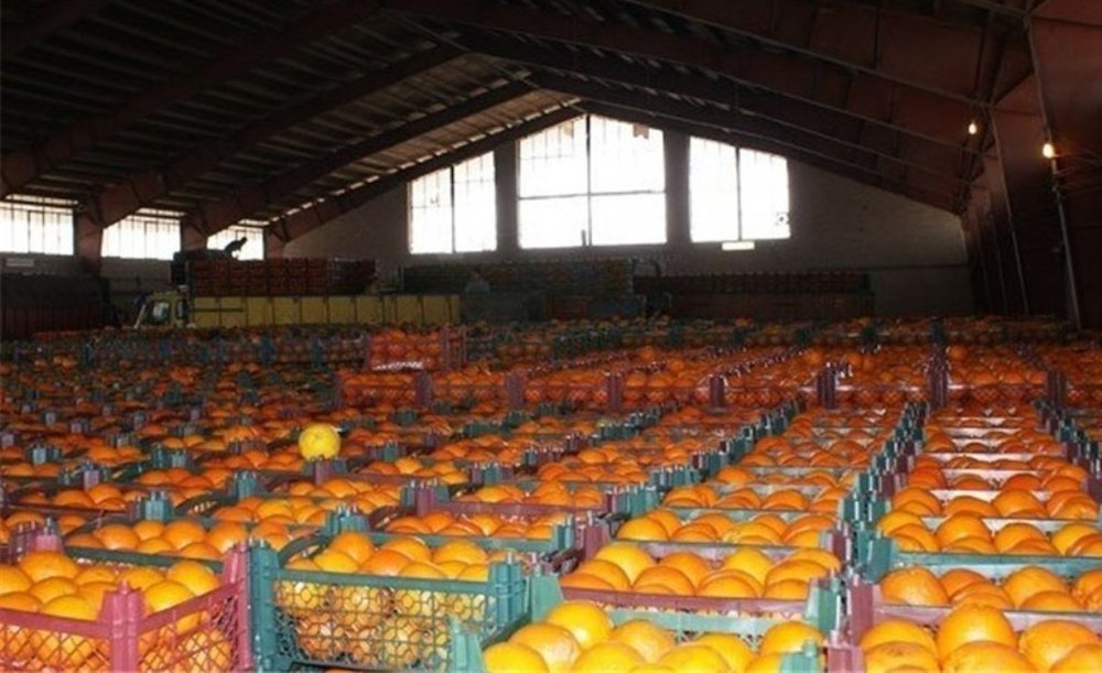 پرتقال شب عید