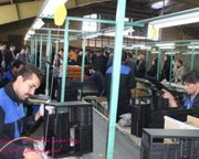 تحقق ۷۷ درصدی برنامه «افزایش تولید» صنایع دراستان چهارمحالوبختیاری