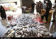 با دستور شهردار بازارچه ماهی یاسوج تعطیل شد