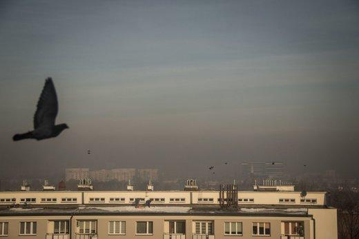 لایه ضخیم دود شهر کاتوویتس لهستان. حدود نیمی از آلودگی هوا این کشور با بخاریهای خانگی ایجاد می شود