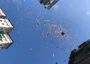 فیلم | بارش اسکناس از آسمان هنگکنگ!