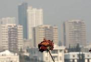 تشدید آلایندههای هوا در پایتخت/ شهروندان از خروج غیرضروری از منزل خودداری کنند