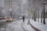 تصاویر   چهره زمستانی سنندج در آخرین روزهای پاییز