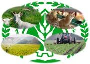 وزیر جهاد کشاورزی خبر داد:بهبود ۱.۲ میلیارد دلاریتراز تجاری بخش کشاورزی