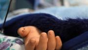 فوت نوزاد ۹ ماهه بر اثر بلعیدن مواد روانگردان