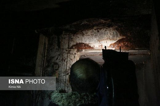 گشت سازمان تعزیرات حکومتی به مناسبت شب یلدا