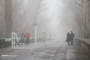 تصاویر | تبریز غرق در مه