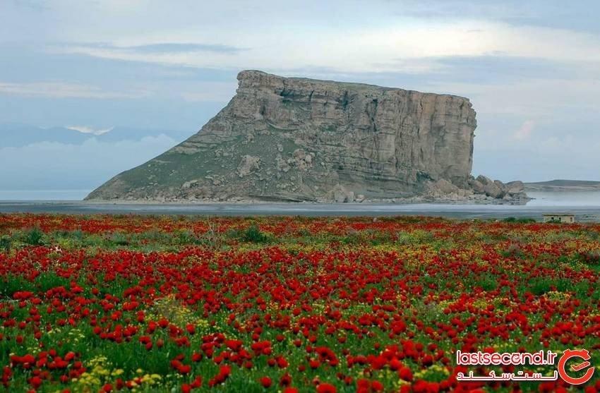 قلعه کاظم داشی