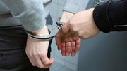 کفتار سیاه پس از سرقت، به اعضای خانواده تجاوز کرد/عکس