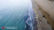 «پیام» در اقیانوس هند غرق شد