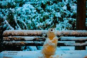 ۱۵ واقعیت جالب و عجیب در مورد برف که شاید نمیدانستید
