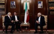 تصاویر | دیدار رئیس مجلس آذربایجان با ظریف