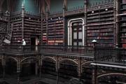 فیلم | کتابخانه جادویی هری پاتر در ریودوژانیرو