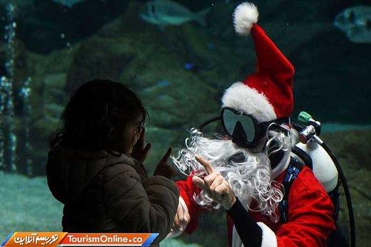 بابانوئل در آکواریوم