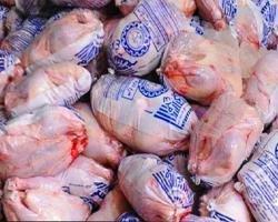 توزیع بیش از ۱۰۰ تن گوشت مرغ منجمد در سطح لرستان