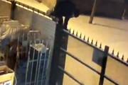 فیلم | سارق بدشانسی که بین زمین و هوا گیر افتاد!