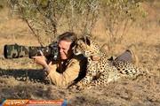 تصاویر | وقتی حیوانات عکستان را خراب میکنند!